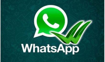 Offerta WhatsApp Versilia